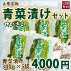 【送料無料】山形もとさわ名物 青菜漬け5袋セット