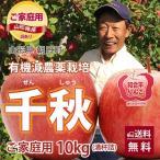 りんご リンゴ 千秋 せんしゅう 訳あり 10kg 若干の色むら 満杯詰め 有機減農薬栽培 朝日町和合平 葉取らずりんご 送料無料