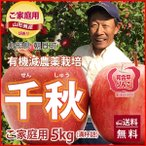 りんご リンゴ 千秋 せんしゅう 訳あり 5kg 若干の色むら 満杯詰め 有機減農薬栽培 朝日町和合平 葉取らずりんご 送料無料