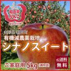 りんご リンゴ シナノスイート 5kg ご家庭用 満杯詰め 有機減農薬栽培 朝日町和合平 葉取らずりんご 訳あり 送料無料