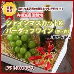 【送料無料】山形産 シャインマスカットと酒井ワイナリー バーダップワイン(赤・白)360ml
