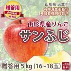 桃 もも 桃 もも リンゴ 林檎 山形 寺正農園 贈答用 サンふじ りんご 5kg 特秀品 16〜18玉入り 発酵有機栽培 送料無料 送料無料