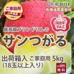 リンゴ リンゴ りんご サンつがる 訳あり 5kg  若干の色むら キズ有り 約18玉入り 有機減農薬栽培 朝日町和合平 葉取らずりんご 送料無料 送料無料
