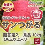 リンゴ リンゴ りんご サンつがる 贈答用 10kg 約36玉入り 有機減農薬栽培 朝日町 和合平 葉取らずりんご 送料無料 送料無料