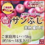 りんご リンゴ 家庭用 ご家庭用 訳あり Lサイズ 5kg  16〜18玉入り 和合平 葉取らずりんご 蜜入り 有機減農薬栽培 送料無料