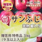 りんご リンゴ 贈答用 サンふじ 特秀品 3kg 9玉以上入り 和合平 葉取らずりんご 蜜入り 有機減農薬栽培 送料無料