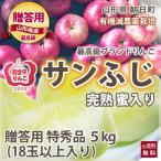 りんご リンゴ 贈答用 サンふじ 特秀品 5kg 18玉以上入り 和合平 葉取らずりんご 蜜入り 有機減農薬栽培 送料無料