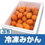 冷凍みかん 旬柑氷結 ぷち愛媛みかん 40個