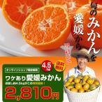 みかん【セール中】 ワケアリ愛媛みかん4.5kg【 わけあり みかん】