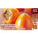 富士柿約3kg-家庭用