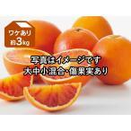 ワケありブラッドオレンジ約3kg