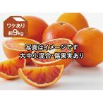 ワケありブラッドオレンジ約9kg