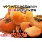 太秋柿 約3kg-贈答用