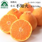 訳あり小粒甘熟濃厚しらぬい(デコポン)家庭用約10kg S〜2S混合