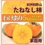 柿子 - 訳あり柿 和歌山のたねなし柿(中谷柿)5kg 22〜32個