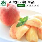 お中元桃 和歌山の桃  大玉 約2kg 5玉〜7玉