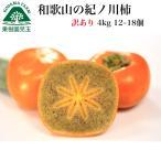 柿子 - 訳あり 和歌山の紀ノ川柿5kg 15〜22個