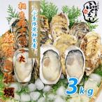 殻付き 牡蠣 3kg【冷蔵便】兵庫県 相生海域 漁師 が販売、とれたて新鮮で す。生食用 かき