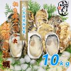 漁師が直売♪相生市特産ぷりぷり殻付きカキ  10キロ ナイフ付き 【冷蔵便】