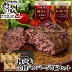 ハンバーグ 冷凍 ギフト お惣菜 格之進 金格ハンバーグ 5個セット