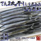 【送料無料】干物 冷凍 業務用 無添加 さんまの丸干し16尾入 伊勢志摩  国産魚