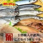 【送料無料】ギフト 冷凍 干物 【無添加】干物4種セット(合計13枚) 国産魚 伊勢志摩