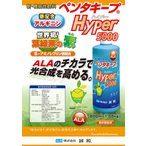 ペンタキープ Hyper5000 1.05kg(800ml)