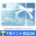 広告入りQUOカード 300円 【有効期限:なし】 ポイント支払い・銀行振込決済・コンビニ決済OK