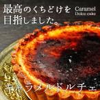 キャラメルドルチェ とろけるチーズケーキ