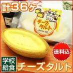 給食 デザート チーズタルト タルトケーキ 学校給食 6ヶ入を6パック