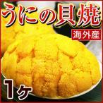 ウニの貝焼き うにの貝焼き うに ウニ むらさきうに ムラサキウニ 貝焼き 貝焼 貝殻を含まず約50g 海外産 福島県 いわき 郷土料理