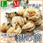 つぶ貝 刺身 つぶ貝ボイル ツブ貝 1kg 銀の滴 または 銀の響