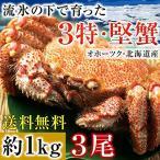 毛ガニ 北海道産 特大 1kg 毛蟹 オホーツク産 毛がに 姿 ボイル冷凍 超特大サイズ 約1kgを3尾