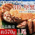 北海道オホーツク産毛がに姿(ボイル冷凍・大サイズ約570g×1尾)
