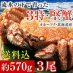 毛ガニ 北海道産 毛蟹 オホーツク産 毛がに 姿 ボイル冷凍 大サイズ約570gを3尾