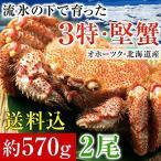 毛ガニ 北海道産 毛蟹 オホーツク産 毛がに 姿 ボイル冷凍 大サイズ約570gを2尾