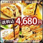 ショッピングギョウザ ふくしまギョーザ4種メガ盛セット(肉餃子12ヶ×2、ピリ辛ぎょうざ12ヶ×2、ニンニクギョウザ12ヶ×2、ニラ餃子12ヶ×2)