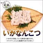 いかなんこつ(5本)国産 無添加 熱海 釜鶴 ひもの