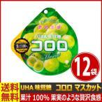 送料無料 UHA味覚糖 コロロ マスカット 1袋(48g)×12袋【 お菓子 駄菓子 】