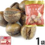 kamejiro_4902855520701-001