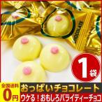 おっぱいチョコレート 20個入 (★出荷後、早ければ翌日お届け!) ネコポス対応 メール便 送料無料