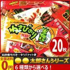 選べる!大人の珍味・駄菓子セット ポイント消化 ゆうパケット便 メール便 送料無料