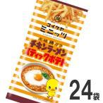 送料無料 湖池屋 チキンラーメン スティックポテト 1袋(40g)×24袋
