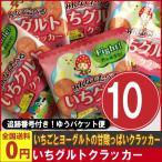 前田製菓 いちグルトクラッカー 1袋(15g)×10袋 ゆうパケット便 メール便 送料無料 駄菓子 ポイント消化 お試し 訳あり ハロウィン 景品