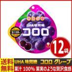 送料無料 UHA味覚糖 コロロ グレープ 1袋(48g)×12袋