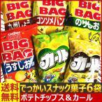 送料無料 あすつく対応 でっかいぞ! ひとり占め!?BIGBAG ポテトチップス&ハッピーターン 5種類合計5袋詰め合わせセット お菓子 詰め合わせ
