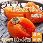 あんぽ柿 蜂屋柿 個包装 福島県産 贈答 10個または12個(1kg相当)