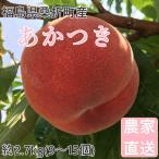 桃 福島県桑折町産 あかつき 通常品 約3kg(9〜12個) 7月下旬〜8月上旬の画像