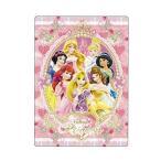 ディズニープリンセス(Disney Princess)下敷き(S4132882)