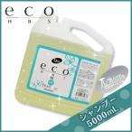 パイモア eco HBS シャンプー 5L